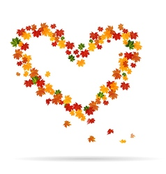 The heart of the autumn leaves vector image