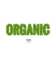 organic made of green grass vector image vector image
