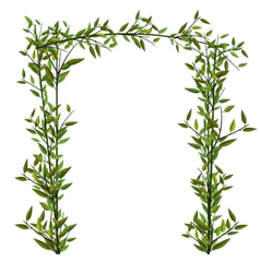 Arch Twined Bamboo Branch Green Leafs vector image