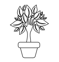 figure tree with leaves inside flower pot vector image