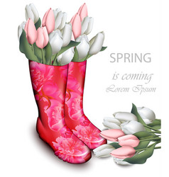 pink tulip flowers boots spring background with vector image vector image