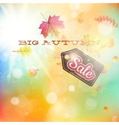 Autumn sales template EPS 10 vector