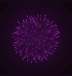 beautiful pink firework bright firework isolated vector image