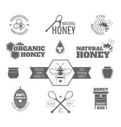 Bee honey label black vector image