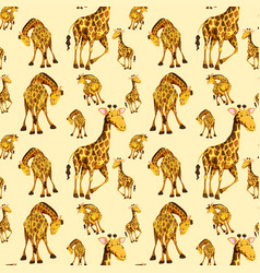 giraffe on seamless pattern vector image