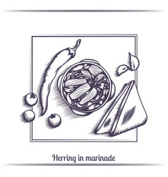 herring in marinade and with bread black vector image