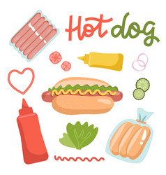 set ingredients for hot dogs isolated on white vector image