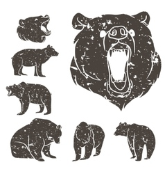 Set of different bears 2 vector image