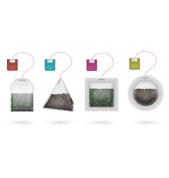 tea bags with black and green brewing tea isolated vector image
