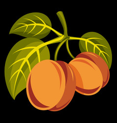 Vegetarian organic food simple two ripe vector