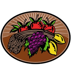 fruit wheat harvest vector image vector image