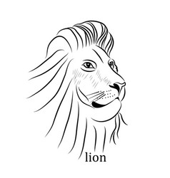 black and white tattoo lion vector image vector image