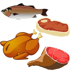 meat isolated vector image
