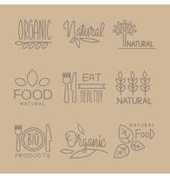 Bio Food Handdrawn Linear Lables Set vector
