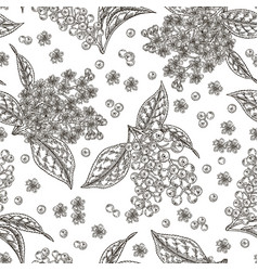 bird cherry flowers and berries seamless pattern vector image