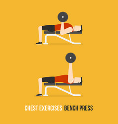 chest exercises bench press vector image