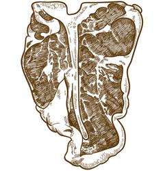 Engraving of t-bone steak vector