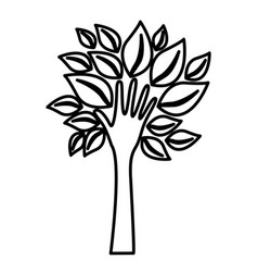 Figure tree with leaves and stem in form hand vector