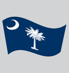 flag of south carolina waving on gray background vector image vector image