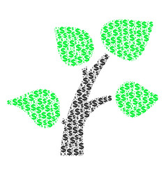 flora plant composition of dollar and dots vector image
