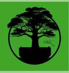 Logo of bonsai tree vector