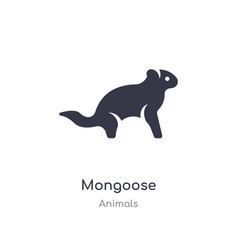 Mongoose icon isolated mongoose icon from animals vector