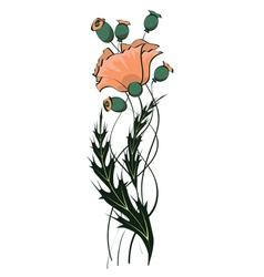Poppy floral pattern vector
