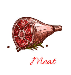 raw fresh hind quarter meat isolated icon vector image
