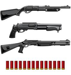 set shotgun vector image