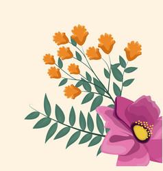 spring flower ornament natural vector image