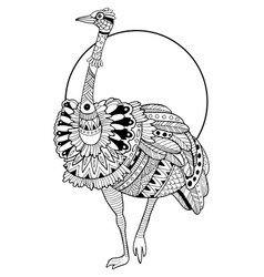 ostrich bird coloring book vector image vector image