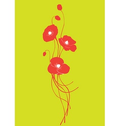 poppy floral vector image