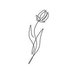 beautiful flower in minimal line style modern vector image