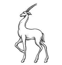 Cartoon image antelope vector