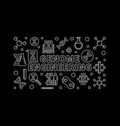 Genome engineering outline horizontal vector