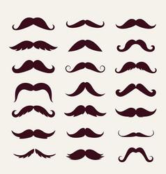 mustache trendy styles set brown mustache curly vector image