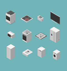 domestic and kitchen appliances isometric vector image
