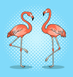 pink flamingo bird pop art vector image