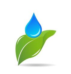 Water drop on leaf logo vector image vector image