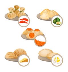 dim-sum treats in plates set wrapped dough with vector image vector image