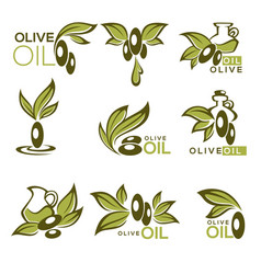 green olive and oil collection of logo vector image vector image
