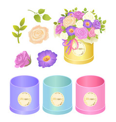 Boxes and flowers collection vector