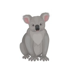detailed flat icon of cute gray koala bear vector image