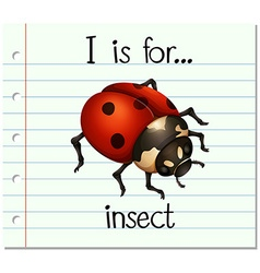 Flashcard letter I is for insect vector image
