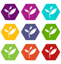 tea leaf sprout icon set color hexahedron vector image
