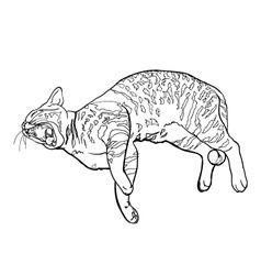 Yawning cat vector