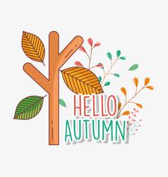 branch leaves hello autumn design icon vector image