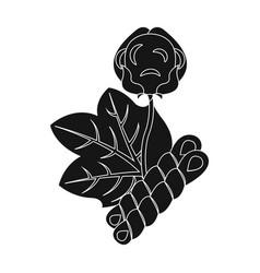 Cotton single icon in black stylecotton vector
