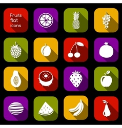 Fruits icons flat vector