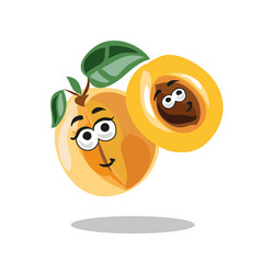 fun cartoon apricot fruit character with leaf vector image